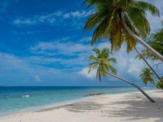Maclura Residence Maldives