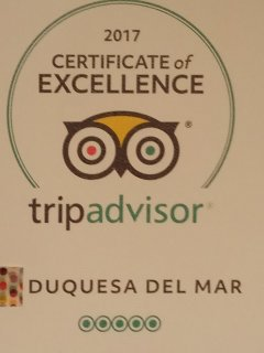 Very honoured to be awarded this  (2017 Certificate Of Excellence) from Tripadvisor