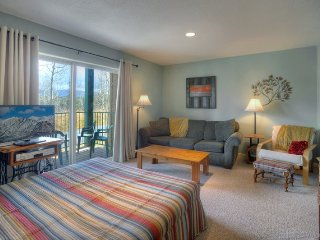 Studio Condo at Purgatory Resort PTH103