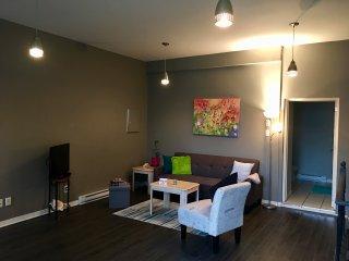 Duplex 2 bedroom loft close to Ottawa & Casino