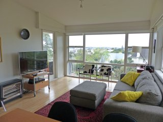 Private apartment in popular Parnell