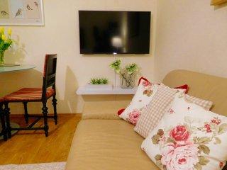 Cosy Apartment in Steyr, Romantikstadt am Nationalpark Kalkalpen bis 4 Pers.