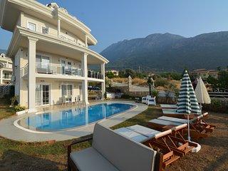 private 5 bedroom 12 sleeps  villa in ovacik