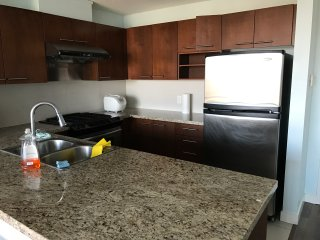 Top Floor Apartment in Central Richmond