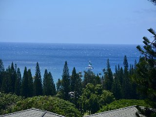 Kapalua Gold Fresh Designer Remodel Stunning Ocean Views!