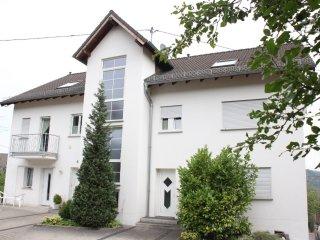 Wunderschönes modernes Villa mit Rheinblick und WLAN über 125 qm