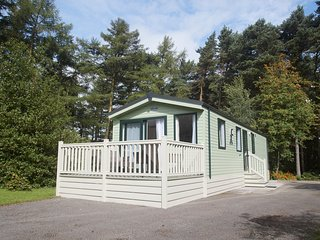 CARDALE ESCAPES, open plan, en-suite, forest views, Ref 961947