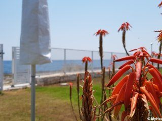 Case Vacanza Marzano direttamente sul mare
