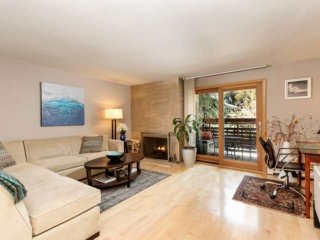 Warm, Inviting And Close To Aspen's Restaurants, Skiing. Wood Fireplace. Updated