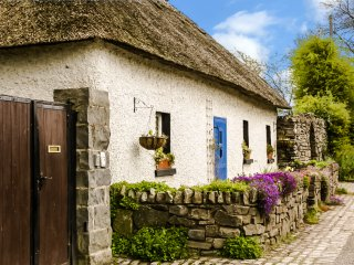 Spacious Authentic Thatched Cottage 35 minutes from Dublin