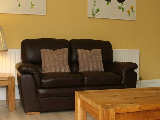 TV Lounge with wood burning stove and seating for 8