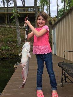 29 1/2 inch catfish!