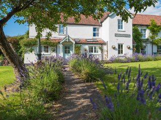 Fab' big house in village centre with garden. Close to beaches and attractions.