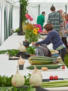 The Dorset County Show - something for everyone to enjoy