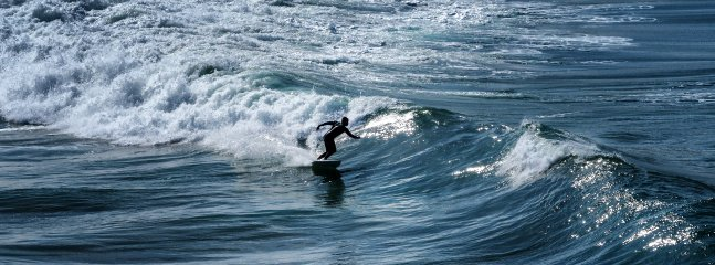 Catch that wave - Nigel Maitland Photography