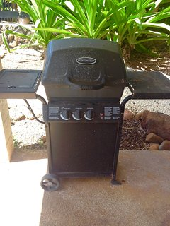 Full-sized gas grill for fish, steaks, chicken, burgers, hot dogs, veggies, pizzas, etc.