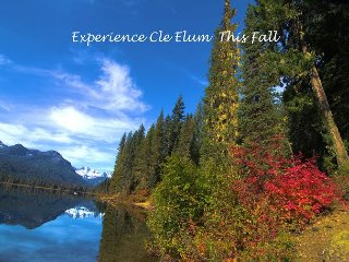 Affordable Mountain Cabin Near Lake Cle Elum & Suncadia|3-for-2 Special