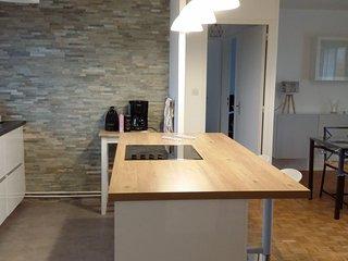 Appartement 70 m2, 6 pers. proche centre ville DIJON et FACS. Grande terrasse.