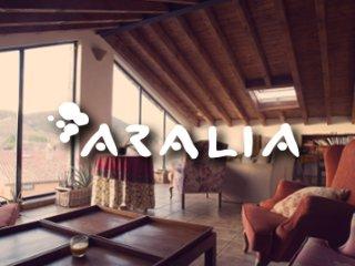 Aralía Rural