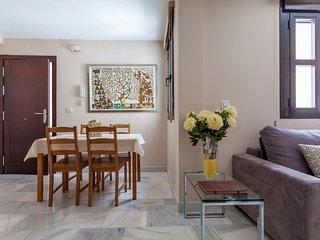 Green-Apartments Pleno Centro: Deluxe Apartment C/Niño Ricardo 3