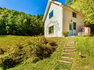 Asheville Area Private Cottage! Beautiful Views! Fine Art Interiors Green Built!