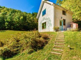 Asheville Area Private Cottage! Beautiful Views! Fine Art Interiors Green Built!