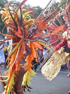 quelques couleur du carnaval qui débute de suite après l'Epiphanie