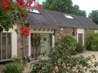 49513 Cottage in Okehampton