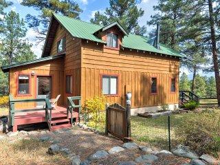 New! 3BR+Loft Pagosa Springs Cabin w/Mtn Views!
