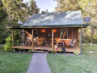 Pet Friendly Cosby Log Cabin w/Fire Pit & Mtn View