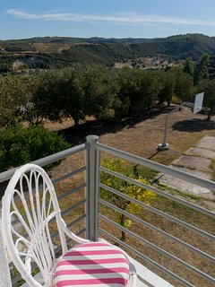 A great 2000sqm of Garden with Basketball court!!