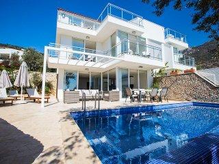 Villa Long Men,3BDR,Luxury Villa with private pool in Kalkan(TigerVillas)