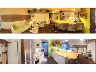 Chambre privee dans appartement en colocation refait a neuf par designer