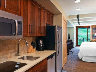 Steamboat Springs Studio Villa w/Skiing, Full Spa, Game Room & More!
