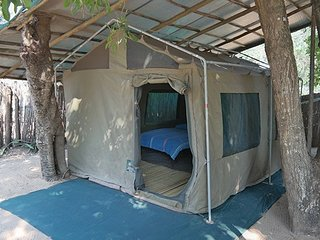 Safari Dive School Tents 8