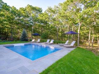 Bridgehampton Spotless Designer Home Heated Saline Pool, READ OUR REVIEWS