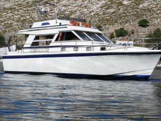 Private Tours and Charters/ Daily and hourly