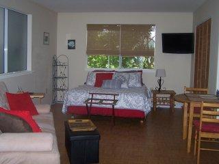 Queen memory foam bed, 100% cotton sheets/blankets, & huge closet