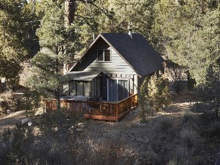 Quiet mountain cabin with a private hot tub, steps away from the national forest