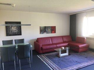 2-Zimmer-Apt., Disentiserhof
