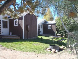 Historic Studio Cabin at Three Rivers Resort in Almont (#5)