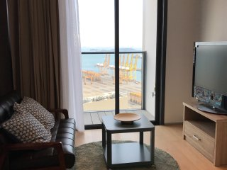 Pet friendly 1-bed apartment in Tanjong Pagar