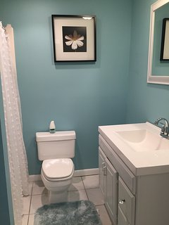 Lower level bath with shower