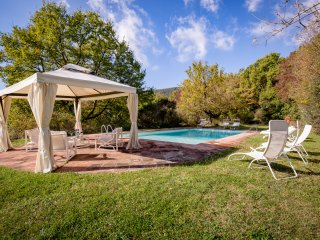 Villa Diva fine estate among ancient olives groves.