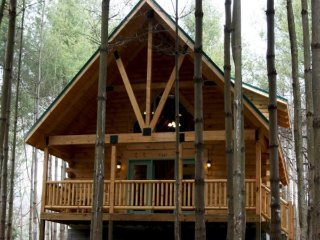 2 Bedroom, 2 Bath Log Cabin