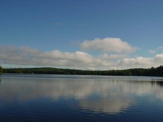 Lake Wicwas - WF - 331