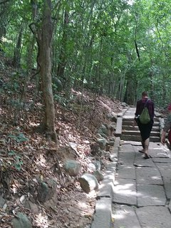 Nature, peace and meditation. Let's take a walk at the mysterious mountain of Ritigala.