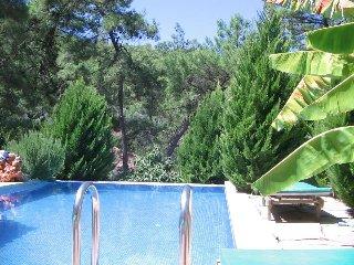 Villa Pine Marmaris Gokce