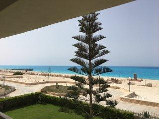 Elegant Modern beachfront chalet (Green Beach, North Coast)