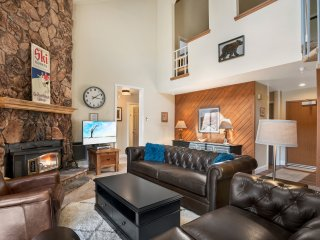 Living Area with Leather Couches